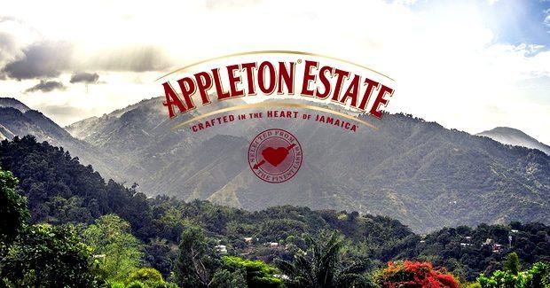 SLIDER_Appleton