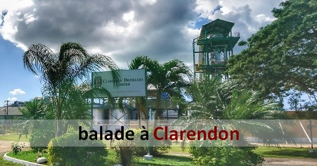SLIDER_clarendon